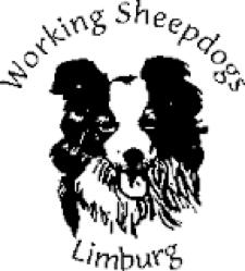 logo de la WSL